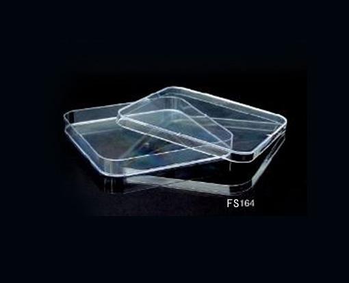 13×13cm培养皿